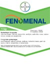 Image FENOMENAL